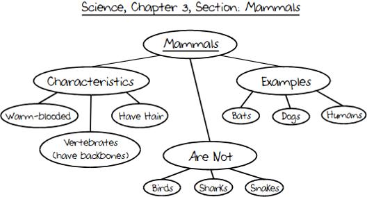Mttc Study Guide